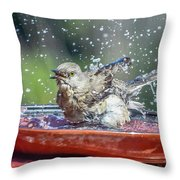 Bird In A Bath Throw Pillow