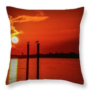 Bird On A Pole Sunrise Throw Pillow