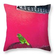 Bird On Cage Throw Pillow
