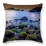 Bird Rock Lajolla II Throw Pillow