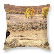 Bison And Cottonwoods Throw Pillow