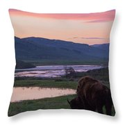 Bison At Sunrise Throw Pillow