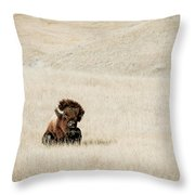 Bison Bull  Throw Pillow