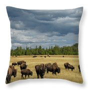Bison In Yellowstone Throw Pillow