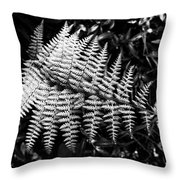 Black And White Fern Throw Pillow by Louis Dallara