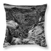Black And White Toroweap Throw Pillow