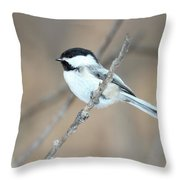 Black-capped Chickadee In Spring Throw Pillow