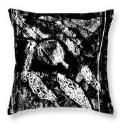 Black Ivory Actual 1b21x Throw Pillow