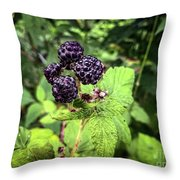 Black Raspberries  Throw Pillow
