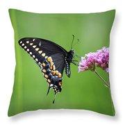 Black Swallowtail Balance Throw Pillow