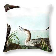 Black Throated Diver, Colymbus Arcticus By Audubon Throw Pillow