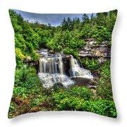 Blackwater Falls, Blackwater Falls State Park, West Virginia Throw Pillow