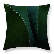 Blades Of Agave Throw Pillow