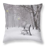 Blizzard In The Park Throw Pillow