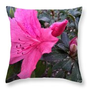 Bloom And Bud Throw Pillow