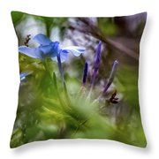 Blue And Green 2 Throw Pillow