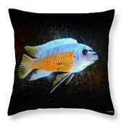 Blue Mbuna Cichlid Throw Pillow