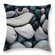 Blue Rock Garden Throw Pillow