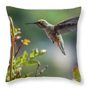 Bobbette At Play Throw Pillow