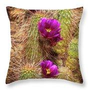 Bouquet Of Beauty Throw Pillow by Rick Furmanek