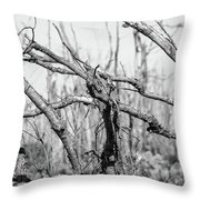Branches In Black And White Throw Pillow