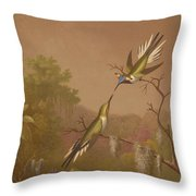 Brazilian Hummingbirds II Throw Pillow