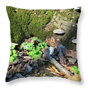 Breeches, Mushrooms And Moss Throw Pillow