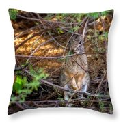 Briar Brunch H1934 Throw Pillow by Mark Myhaver