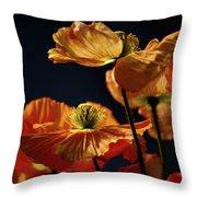 Bright Orange Poppies Throw Pillow