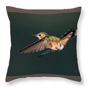 Broad-tailed Hummingbird Throw Pillow