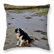 Brodie And Bass Rock Throw Pillow