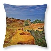 Broken Hill Panoramic II Throw Pillow