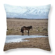 Brown Icelandic Horse In Profile Near Stream Throw Pillow