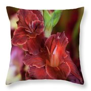 Brown Jewel 5. The Beauty Of Gladiolus Throw Pillow