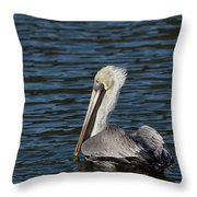 Brown Pelican Throw Pillow by Jemmy Archer