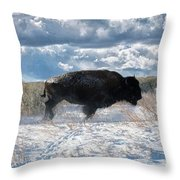 Buffalo Charge.  Bison Running, Ground Shaking When They Trampled Through Arsenal Wildlife Refuge Throw Pillow