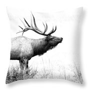 Bull Elk In Rut Throw Pillow