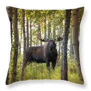 Bull Moose In Fall Forest Throw Pillow
