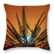 Burmese Fern At Sunset Throw Pillow by Chris Lord