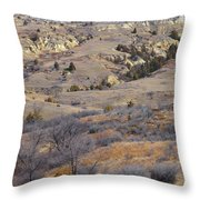 Burning Coal Vein April Reverie Throw Pillow