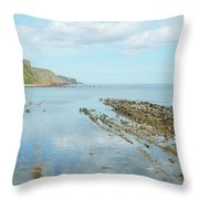 Burnmouth Shore, Cliffs And North Sea Throw Pillow