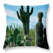 Cactus Twins Have Company Throw Pillow