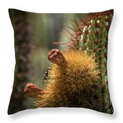 Cactus With Beetle Throw Pillow