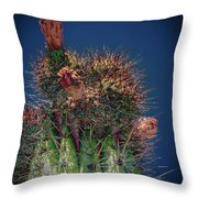 Cactus With Pink Flower Throw Pillow
