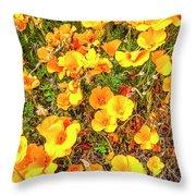 California Poppies - 2019 #3 Throw Pillow