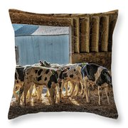 Calves Throw Pillow