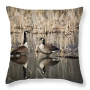 Canada Geese On The Marsh Throw Pillow by Jemmy Archer