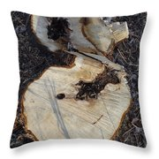 Canal Stumps-013 Throw Pillow