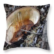 Canal Stumps-014 Throw Pillow