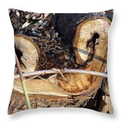 Canal Stumps-017 Throw Pillow